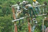 Layani Kebutuhan Wilmar, PLN Dumai Bangun 99 Menara Transmisi Listrik