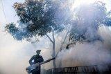 Sleman lakukan gerakan pemberantasan sarang nyamuk di Maguwoharjo