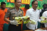 Riau Police Confiscate Drug Worth Rp12.7 Billion on Street