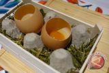 Telur dan daging ayam bisa jadi menu pilihan tepat saat kerja dari rumah