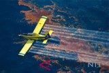 Petani rumput laut Indonesia tuntut Australia atas tumpahan minyak