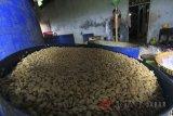 Pekerja menyelesaikan pembuatan tempe di kelurahan Bojongsari, Indramayu, Jawa Barat, Senin (23/4). Pemerintah melalui Kementerian Koperasi dan UKM menargetkan pelaku Usaha Mikro, Kecil dan Menengah (UMKM) tumbuh sebanyak 5 persen dari jumlah penduduk di tahun 2019. ANTARA JABAR/Dedhez Anggara/agr/18.