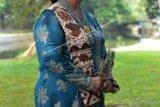 Siti Nurbaya: Rimbawan perempuan ibarat pelita tak pernah padam