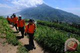 Jalur pendakian Gunung Merbabu sementara ditutup untuk cegah corona