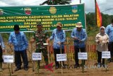 South Solok To Plant 100 Hectares Gogo Rice