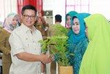 Gubernur Serahkan 25.000 Bibit untuk Warga Nunukan