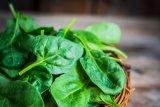 Sayuran rendah glikemik untuk penyandang diabetes