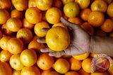 Jaga kesehatan di musim hujan dengan jeruk hingga walnut
