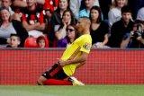 Richarlison resmi bergabung ke Everton hingga 2023