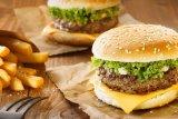 Diet tinggi lemak jenuh tingkatkan resiko depresi