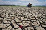 Sejumlah wilayah di Wonogiri mulai kekeringan ekstrem