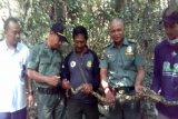 BKSDA-Karantina Pertanian Lampung lepasliarkan satwa
