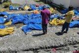 Tsunami di Pandeglang akibatkan 35 orang meninggal
