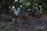 Chevron komit tuntaskan pembersihan limbah minyak di Tahura Riau