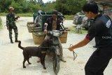 Seorang petugas dan anjing pelacak dari Unit K9 Bea Cukai Kantor Wilayah Kalimantan Bagian Barat (Kanwil) Kalbagbar memeriksa kendaraan pengangkut barang dari Malaysia yang hendak masuk ke Indonesia di perbatasan Jagoi Babang, Kabupaten Bengkayang, Kalbar, Rabu (17/10/2018). Guna mengantisipasi penyelundupan narkoba, Unit K9 Bea Cukai Kanwil Kalbagbar melakukan pemeriksaan dengan mengunakan anjing pelacak yang mampu mendeteksi keberadaan barang ilegal tersebut. ANTARA FOTO/HS Putra/jhw