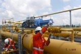 PGN mulai bangun pipa minyak di Blok Rokan Riau