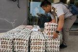 Seorang petugas mengangkat keranjang telur sebelum pembakaran sejumlah barang bukti hasil tangkapan di Stasiun Karantina Kelas I Entikong, Kabupaten Sanggau, Kalbar, Jumat (5/10). Ribuan telur ayam dan 70 kilogram daging unggas beku asal Malaysia yang merupakan hasil tangkapan Satgas Pamtas Indonesia-Malaysia dari Yonif 511/Dibyatara Yudha dimusnahkan, untuk mencegah masuknya virus flu burung yang sedang mewabah di negeri jiran. ANTARA FOTO/Agus Alfian/jhw/18