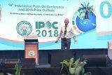 No Palm Oil, No SDGs