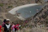 Wisata Pulau Padar
