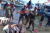TNI AL gelar penyuluhan rumput laut di Pagimana