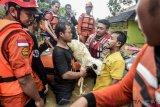 Basarnas umumkan korban meninggal tsunami bertambah menjadi 429 orang