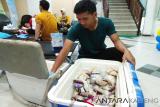 Penuhi persediaan darah, PMI jemput bola pendonor darah