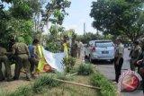 Tim penertiban APK di Mataram diminta bertindak tanpa digerakkan