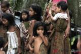 Industri perkuat hak dan perlindungan anak di perkebunan sawit