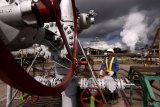 Pertamina percepat pemanfaatan pengembangan energi panas bumi