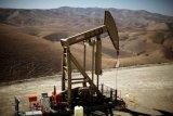 Minyak menetap lebih tinggi di akhir perdagangan Kamis pagi ditopang peningkatan permintaan bensin AS