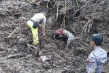 K9 Polda Sulsel temukan bau korban longsor