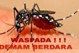 Peralihan musim, masyarakat imbau lakukan pemberantasan sarang nyamuk