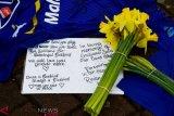 Bantal pesawat yang ditumpangi Emiliano Sala ditemukan