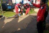 14 kasus demam berdarah dengue terjadi di Batang