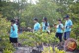 BNI mendukung ekosistem kelautan dan perikanan