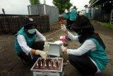 Penelitian limbah bahan berbahaya dan beracun