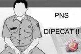 PNS peserta pilkada tidak mundur diberhentikan dengan tidak hormat