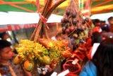 Salah satu buah lokal Tampang Susu dipamerkan pada Festival Buah Lokal Kalsel di Desa Marajai, Kabupaten Balangan, Kalimantan Selatan,Senin (14/1/2019).Sejumlah buah endemik Kalsel dipamerkan pada Festival Buah Lokal dalam upaya penyelamatan buah-buah endemik yang hampir punah dan memperkenalkan buah langka kepada wisatawan nasional dan internasional. Foto Antaranews Kalsel/Bayu Pratama S/f.