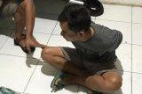 Polda Riau limpahkan berkas tersangka perambah hutan