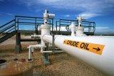 Harga minyak jatuh karena kekhawatiran Virus Corona