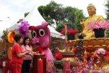 Atraksi naga berkilau ramaikan perayaan Cap Go Meh di Pontianak