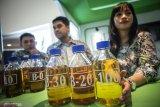 GAPKI: Serapan biodiesel strategi hadapi diskriminasi sawit UE