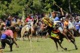 Pasola Wanokaka saat ini merupakan yang terlama