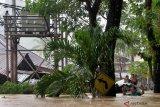 PLN UP3 Manado padamkan 321 gardu akibat banjir-longsor