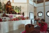 Atraksi barongsai meriahkan perayaan Imlek di Jayapura