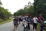Terjadi kecelakaan bus di Jalan Trans Kalimantan Pontianak - Tayan pada Jumat (1/2) sekitar pukul 08.45 mengakibatkan kemacetan. (Foto Antaranews Kalbar/Tantra)