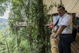 Menteri Koordinator Bidang Kemaritiman Luhut Binsar Panjaitan melihat jembatan gantung saat kunjungan di kawasan wisata Jembatan Gantung Situ Gunung, Kadudampit, Kabupaten Sukabumi, Jawa Barat, Sabtu (9/3/2019). Dalam kunjungannya tersebut, Luhut Binsar Panjaitan meresmikan Jembatan Gantung Situ Gunung yang merupakan Jembatan Gantung terpanjang se-Asia Tenggara. ANTARA JABAR/Nurul Ramadhan/agr.