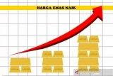 Jelang pertemuan FED, harga emas berjangka naik