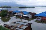Banjir sentani tenggelamkan peninggalan megalitik