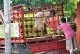 Penggunaan elpiji Minahasa Tenggara melebihi kuota